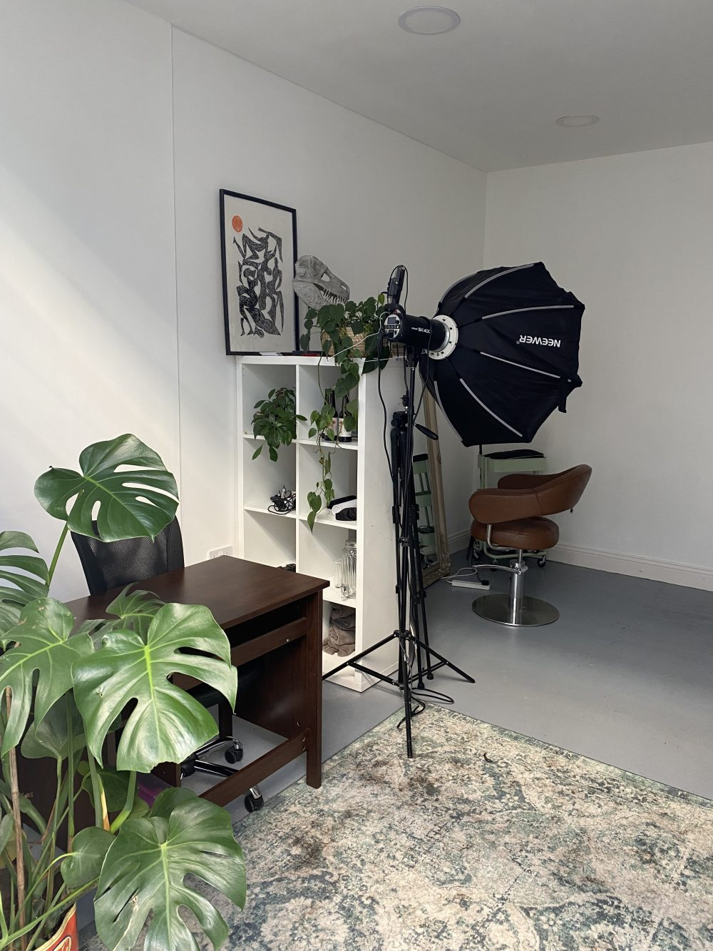Ground floor Warehouse Space To Rent In N4 Manor House Florentia Clothing Village Tia Cottage Pic5